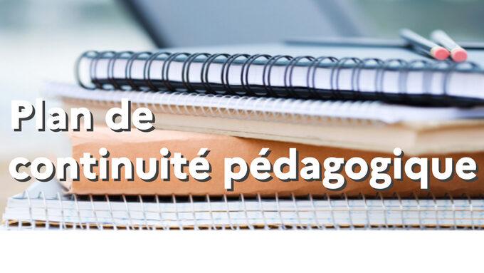 Rentree2020_Plan_de_continuite_pedagogique.jpg